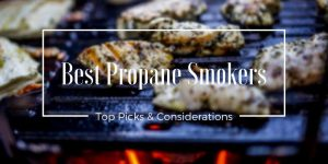 Best Propane Smokers Reviews