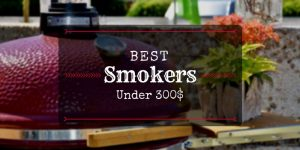 Best Smokers Under 300 Dollars Reviews