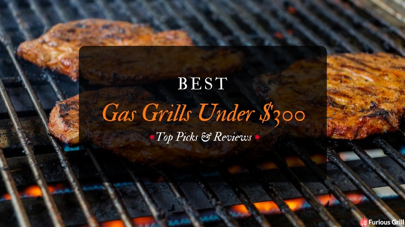 Best Gas Grills Under 300 Dollars Reviews