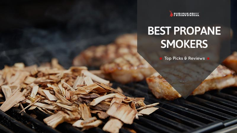 Best Propane Gas Smokers Reviews