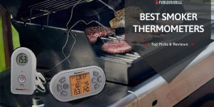 Best-Smoker-Thermometer-Reviews