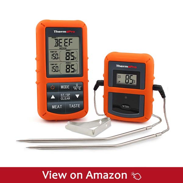 ThermoPro-TP20-Probes