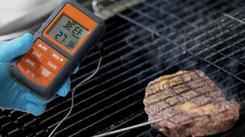 Why-You-Need-a-Meat-Thermometer