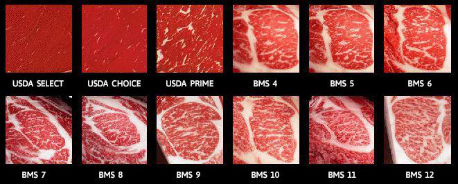 Japanese-vs-USA-Steak-Marble-Score