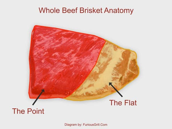 Brisket-Anatomy-PointFlat