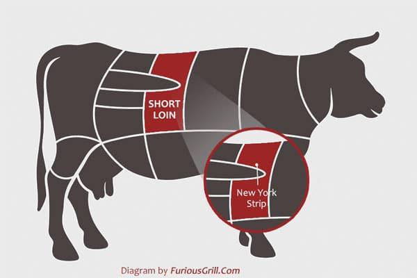 New-York-Strip-Location-Cow