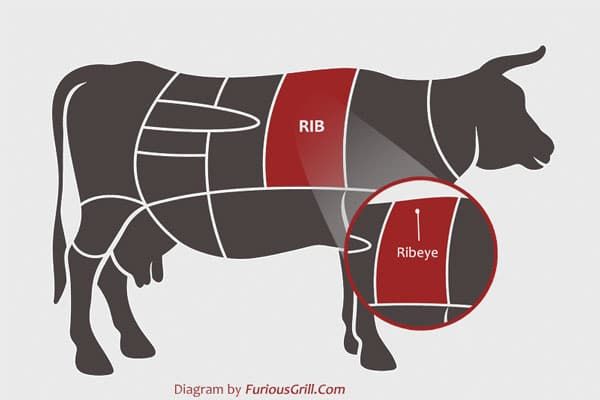 Ribeye-Location-Cow