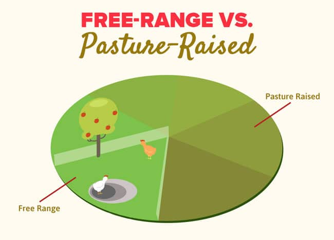 Free-Range-vs-Pasture-Raised