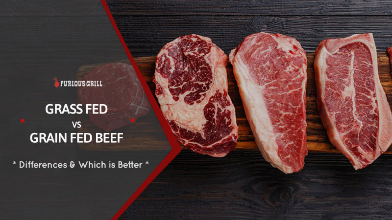 Grass-Fed-vs-Grain-Fed-Beef-Differences-Which-is-Better