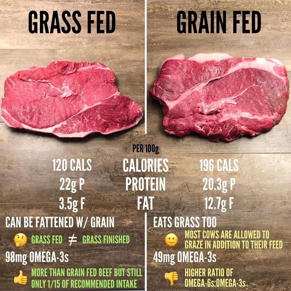 Grass-Fed-vs-Grain-Fed-Nutritions-Differences